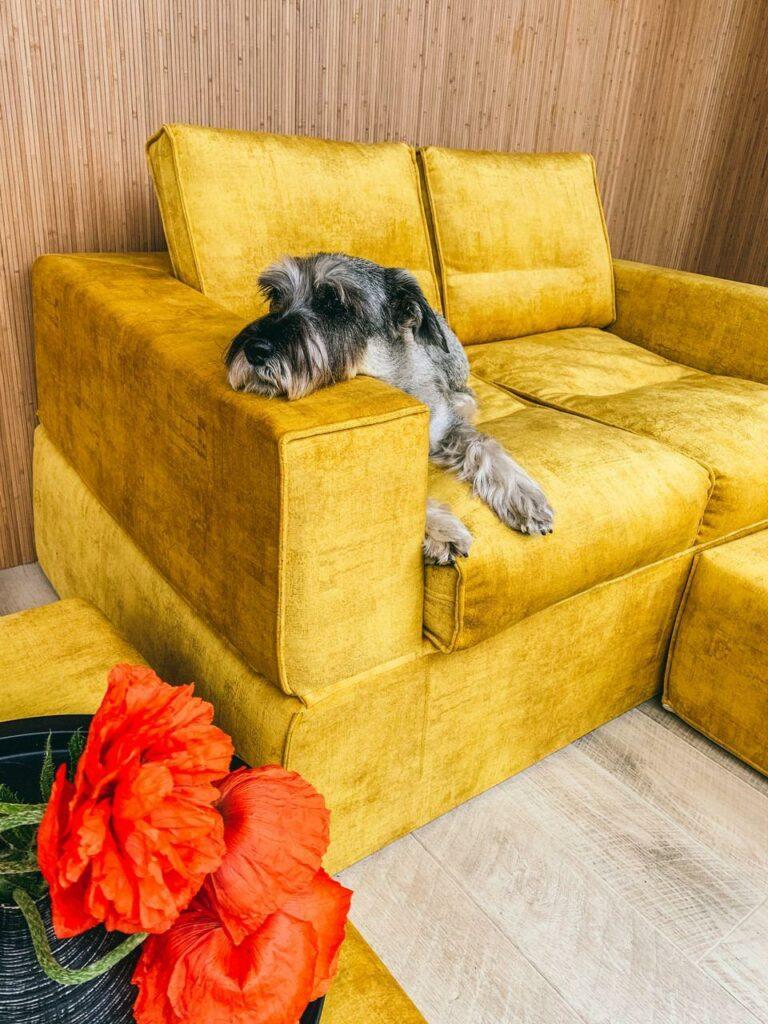 диван раскладной бескаркасный